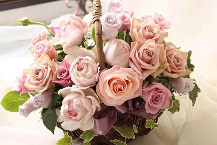 گل نماد طراوت است