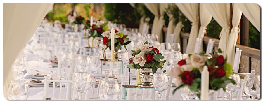 شبی به یاد ماندنی با مدیریت جشن عروسی